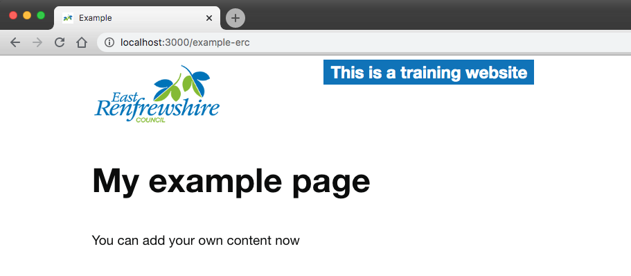 "screenshot of how it looks in the localhost:3000, we now have a logo of the council displayed at the top and a tag saying ""This is a training website"""